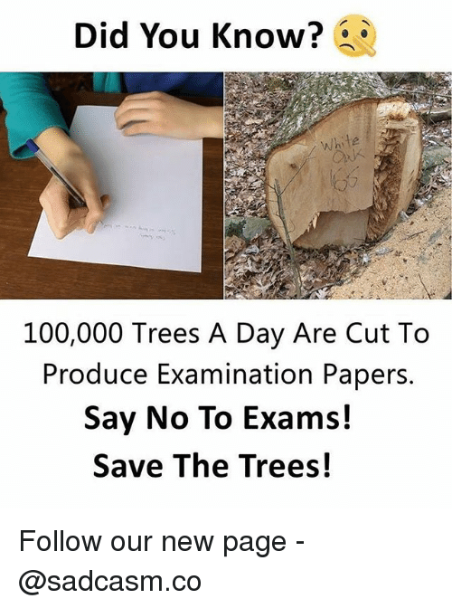 Anaconda, Memes, and Trees: Did You Know?  white  100,000 Trees A Day Are Cut To  Produce Examination Papers.  Say No To Exams!  Save The Trees! Follow our new page - @sadcasm.co