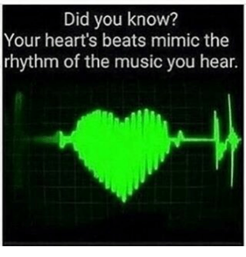 Memes, Music, and Beats: Did you know?  Your heart's beats mimic the  rhythm of the music you hear