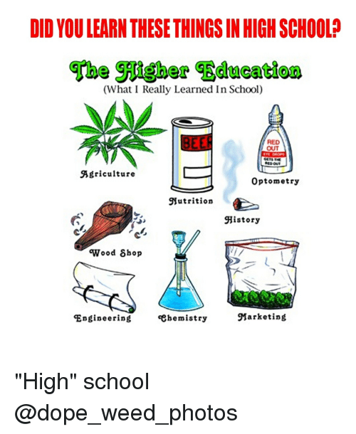 "Dope, School, and Weed: DID YOU LEARN THESE THINGS IN HIGH SCHOOL?  (What I Really Learned In School)  RED  OUT  Agriculture  Optometry  Nutrition  History  'Wood δhop  Engineering  «ehemistry  Marketing ""High"" school @dope_weed_photos"