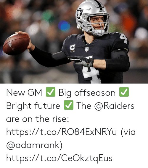 Future, Memes, and Raiders: DIDERS  RAIDERS New GM ✅ Big offseason ✅ Bright future ✅  The @Raiders are on the rise: https://t.co/RO84ExNRYu (via @adamrank) https://t.co/CeOkztqEus