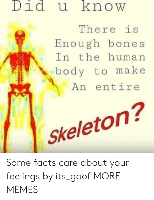 Bones, Dank, and Facts: Didu knowW  There is  Enough bones  In the human  body to make  An entire  Skeleton? Some facts care about your feelings by its_goof MORE MEMES