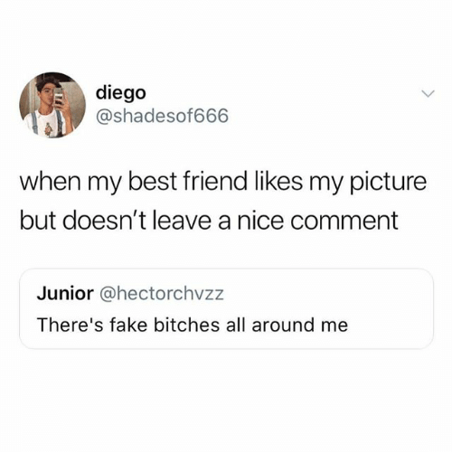Best Friend, Fake, and Funny: diego  @shadesof666  when my best friend likes my picture  but doesn't leave a nice comment  Junior @hectorchvzz  There's fake bitches all around me