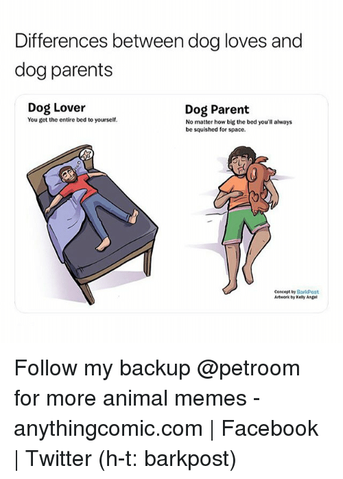 how to get a dog when your parents say no