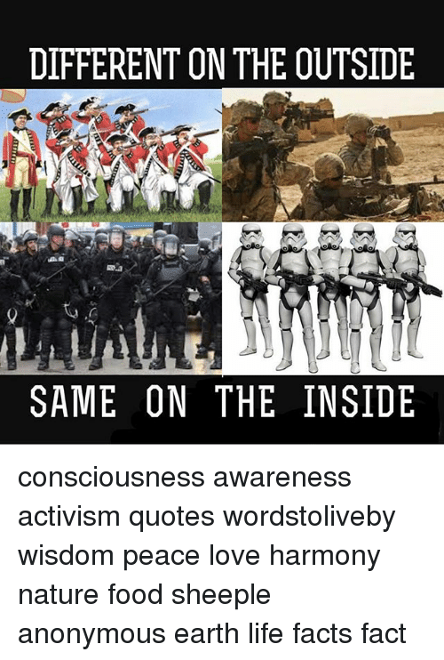Activism Quotes Custom DIFFERENT ON THE OUTSIDE SAME ON THE INSIDE Consciousness Awareness