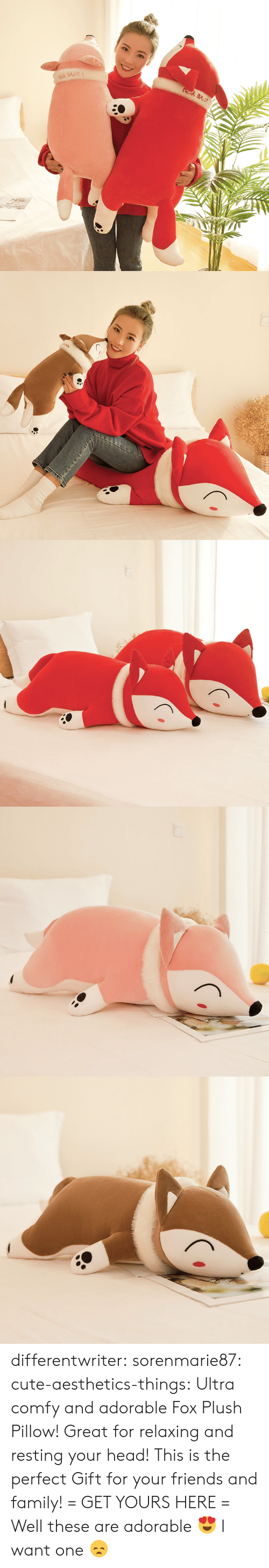 Cute, Family, and Friends: differentwriter:  sorenmarie87:  cute-aesthetics-things:  Ultra comfy and adorable Fox Plush Pillow! Great for relaxing and resting your head! This is the perfect Gift for your friends and family! = GET YOURS HERE =   Well these are adorable 😍  I want one 😞