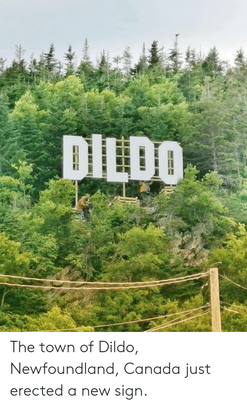 Canada, The Town, and Newfoundland: DILDO The town of Dildo, Newfoundland, Canada just erected a new sign.