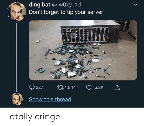 Bat, Server, and Show: ding bat @_wOxy · 1d  Don't forget to tip your server  Q 227  274,844  16.2K  Show this thread Totally cringe