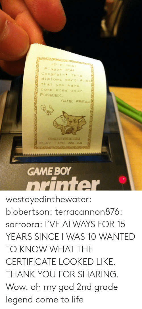 God, Life, and Oh My God: diploma certifias  that sou have  oomp leced your  PoxèDEX  GAME FREAK  PLAY TIME 39  04  GAME BOY  orinter westayedinthewater: blobertson:  terracannon876:  sarroora:  I'VE ALWAYS FOR 15 YEARS SINCE I WAS 10 WANTED TO KNOW WHAT THE CERTIFICATE LOOKED LIKE. THANK YOU FOR SHARING.  Wow.  oh my god  2nd grade legend come to life