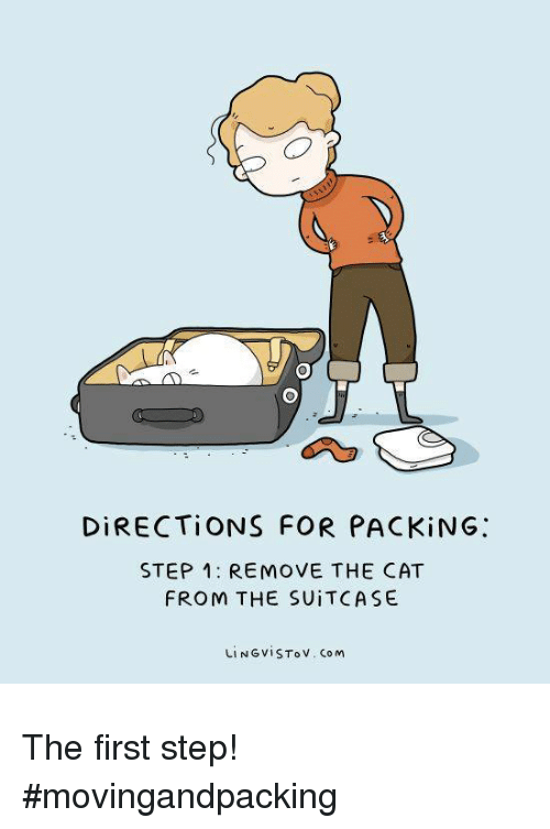 Cat, Com, and Step: DİRECTİONS FOR PACKİNG:  STEP 1: REMOVE THE CAT  FROM THE SUITCASE  LINGVISTov. Com The first step! #movingandpacking