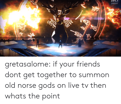 Friends, Tumblr, and Blog: DIREKT gretasalome:  if your friends dont get together to summon old norse gods on live tv then whats the point