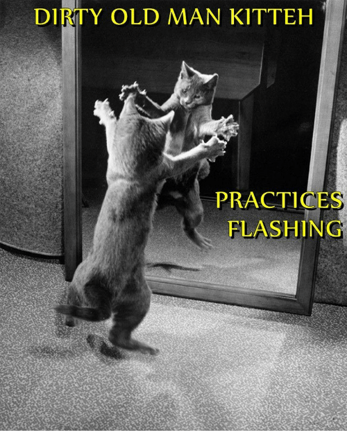 Old Man, Dirty, and Old: DIRTY OLD MAN KITTEH  PRACTICES  FLASHING