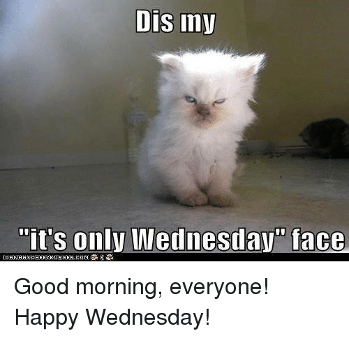 Good Morning Meme Wednesday : Best memes about its only wednesday