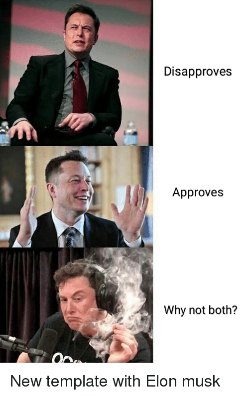disapproves approves why not both elon musk meme on me me