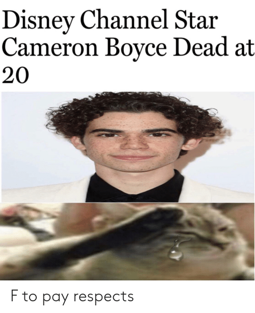 Disney Channel Star Cameron Boyce Dead At 20 F To Pay Respects