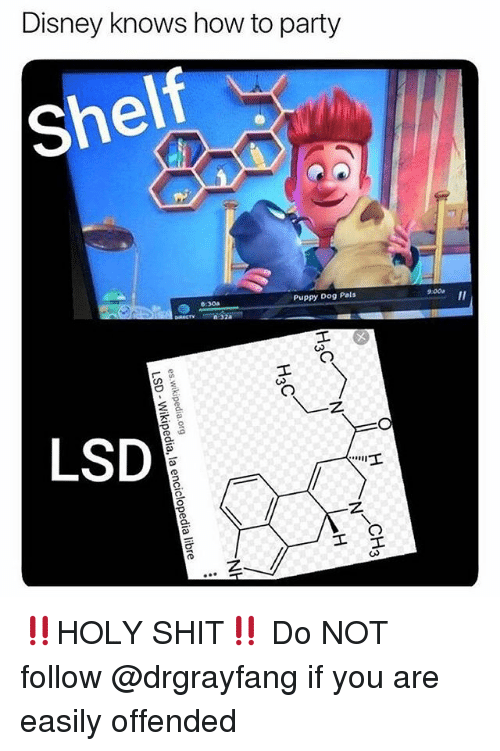 Disney, Memes, and Party: Disney knows how to party  shelf  Puppy Dog Pals  9:00  6:30a  Il  LSD ‼️HOLY SHIT‼️ Do NOT follow @drgrayfang if you are easily offended