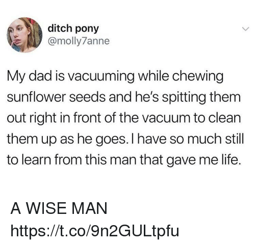 Dad, Funny, and Life: ditch pony  @molly7anne  My dad is vacuuming while chewing  sunflower seeds and he's spitting them  out right in front of the vacuum to clean  them up as he goes.I have so much still  to learn from this man that gave me life. A WISE MAN https://t.co/9n2GULtpfu