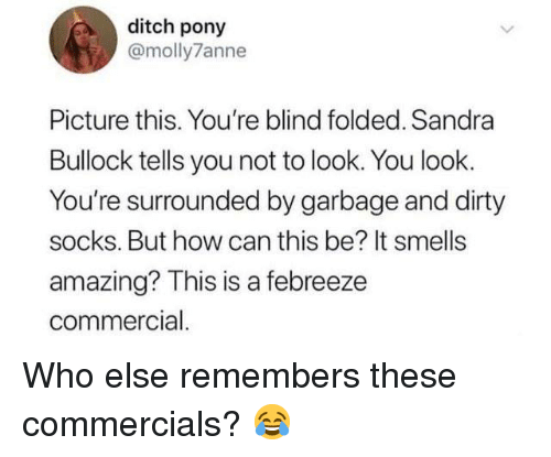 Dank, Dirty, and Sandra Bullock: ditch pony  @molly7anne  Picture this. You're blind folded. Sandra  Bullock tells you not to look. You look.  You're surrounded by garbage and dirty  socks. But how can this be? It smells  amazing? This is a febreeze  commercial. Who else remembers these commercials? 😂