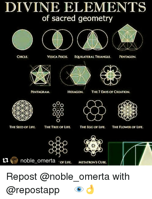 Memes, Flower, and Flowers: DIVINE ELEMENTS  of sacred geometry  CIRCLE.  VESICA PISCIS. FOUILATERAL TRIANGLE  PENTAGON  HEXAGON  THE 7 DAYS OF CREATION  PENTAGRAM.  OAO  OXO  THE SEED OF LIFE.  THE TREE OF LIFE  THE EGG OF LIFE  THE FLOWER OF LIFE  ti noble omerta  OF LIFE.  METATRON'S CUBE. Repost @noble_omerta with @repostapp ・・・ 👁👌