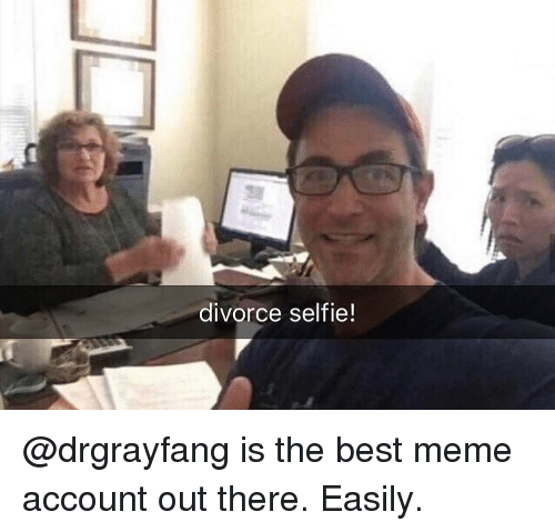 Meme, Memes, and Selfie: divorce selfie! @drgrayfang is the best meme account out there. Easily.