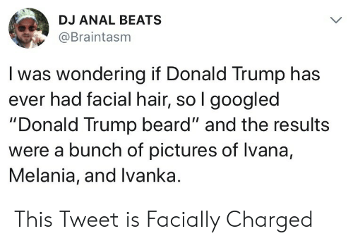 "Beard, Donald Trump, and Anal: DJ ANAL BEATS  @Braintasm  I was wondering if Donald Trump has  ever had facial hair, so l googled  ""Donald Trump beard"" and the results  were a bunch of pictures of lvana,  Melania, and Ivanka. This Tweet is Facially Charged"
