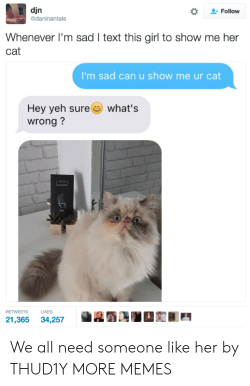 Dank, Memes, and Target: djn  daninantais  *  으. Follow  Whenever I'm sad I text this girl to show me her  cat  I'm sad can u show me ur cat  Hey yeh sure  wrong?  what's  RETWEETS LIKES  21,365 34,257 We all need someone like her by THUD1Y MORE MEMES