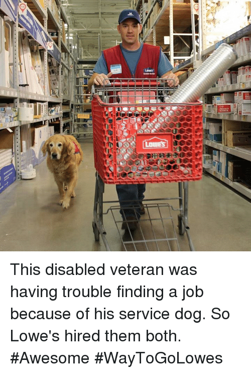 dn this disabled veteran was having trouble finding a job 14548774 ✅ 25 best memes about lowes lowes memes