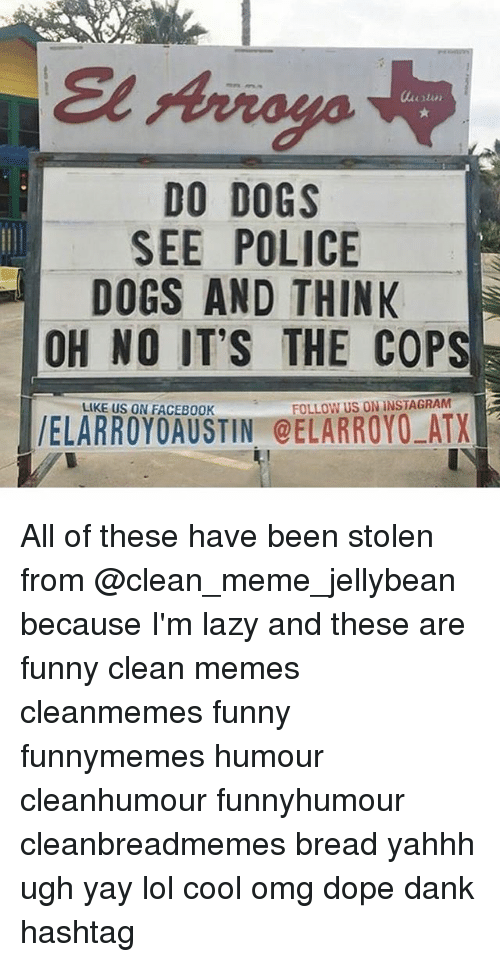 Dank, Dogs, and Dope: DO DOGS  SEE POLICE  DOGS AND THINK  OH NO IT'S THE COPS  LIKE US ON FACEB00K  FOLLOW US ON INSTAGRAM All of these have been stolen from @clean_meme_jellybean because I'm lazy and these are funny clean memes cleanmemes funny funnymemes humour cleanhumour funnyhumour cleanbreadmemes bread yahhh ugh yay lol cool omg dope dank hashtag
