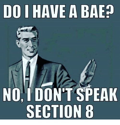do have a bae no dont speak section 8 20849549 25 best speak section 8 memes a bae memes, i have memes, i dont