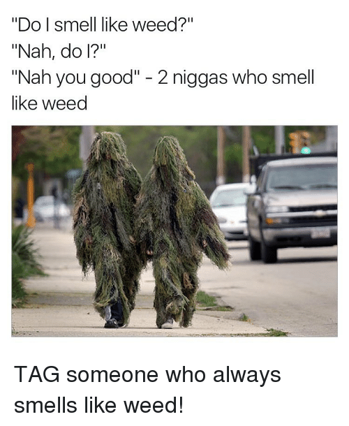 Do I Smell Like Weed? Nah Do I? Nah You Good 2 Niggas Who