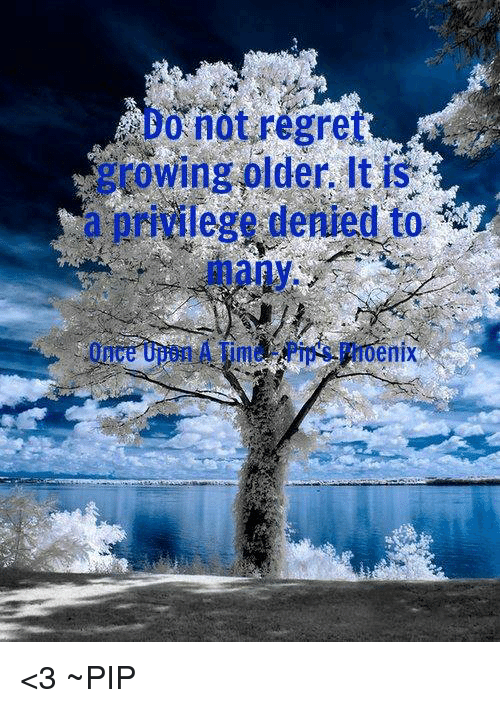 Do Not Regret Growing Older It Is A Privilege Denied To Many Once