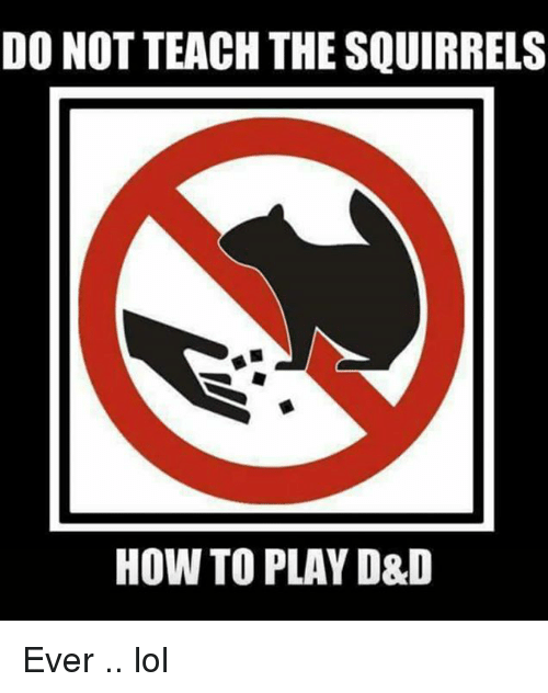 do-not-teach-the-squirrels-how-to-play-d