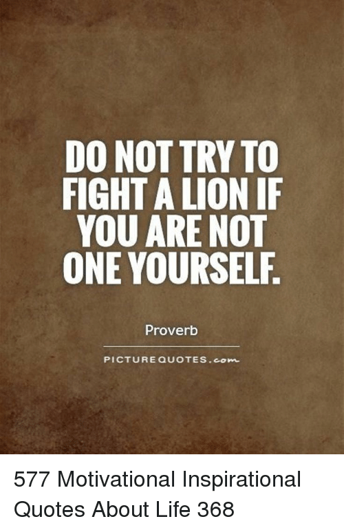 Do Not Try To Fight A Lion If You Are Not One Yourself Proverb
