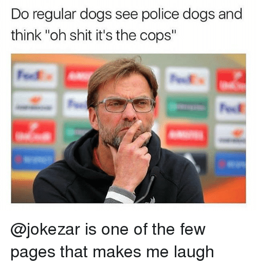 """Dogs, Police, and Shit: Do regular dogs see police dogs and  think """"oh shit it's the cops"""" @jokezar is one of the few pages that makes me laugh"""