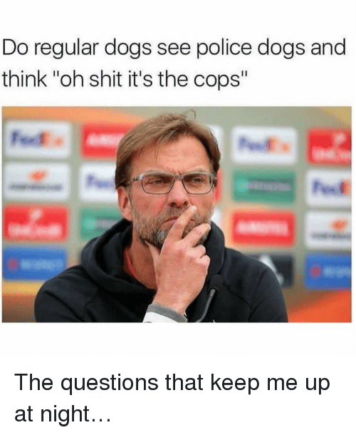 "Dogs, Memes, and Police: Do regular dogs see police dogs and  think ""oh shit it's the cops"" The questions that keep me up at night…"