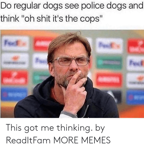 "Dank, Dogs, and Memes: Do regular dogs see police dogs and  think ""oh shit it's the cops"" This got me thinking. by ReadItFam MORE MEMES"