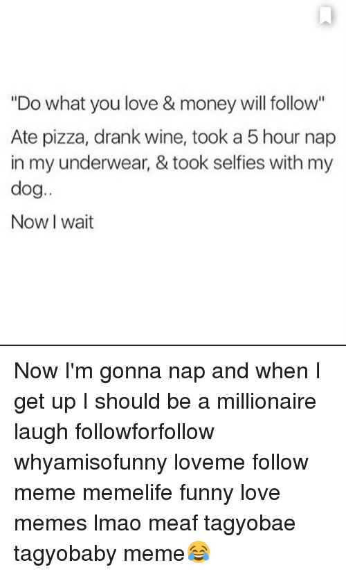 """Funny, Lmao, and Love: """"Do what you love & money will follow""""  Ate pizza, drank wine, took a 5 hour nap  in my underwear, & took selfies with my  dog  Now wait Now I'm gonna nap and when I get up I should be a millionaire laugh followforfollow whyamisofunny loveme follow meme memelife funny love memes lmao meaf tagyobae tagyobaby meme😂"""