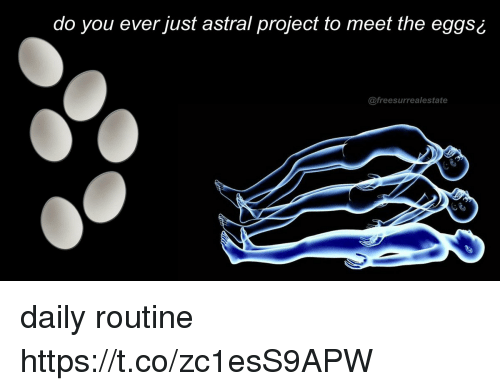 Project, You, and Daily: do you ever just astral project to meet the eggs ¿  @freesurrealestate daily routine https://t.co/zc1esS9APW