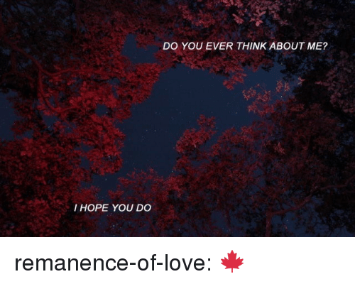 Love, Target, and Tumblr: DO YOU EVER THINK ABOUT ME?  I HOPE YOU DO remanence-of-love:  🍁