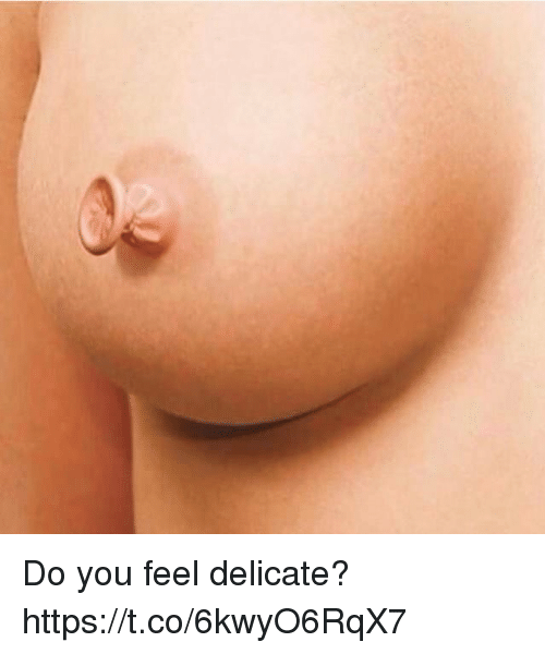 You, Feel, and Do You: Do you feel delicate? https://t.co/6kwyO6RqX7