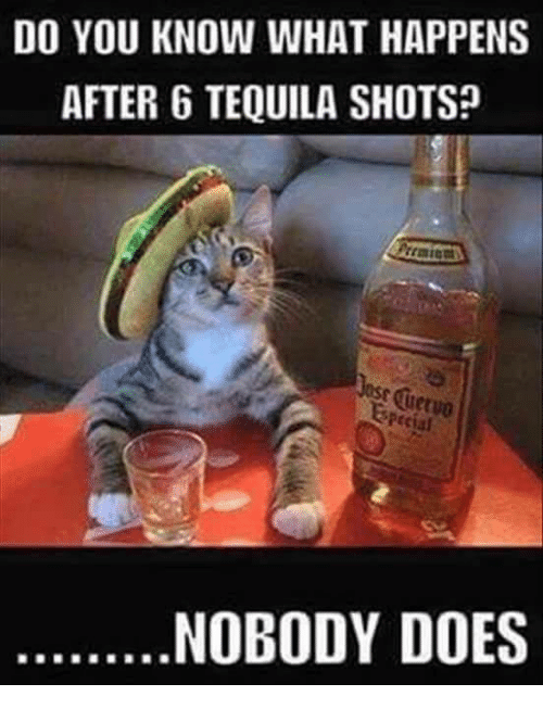 Do You Know What Happens After 6 Tequila Shotsp Pecial Nobody Does