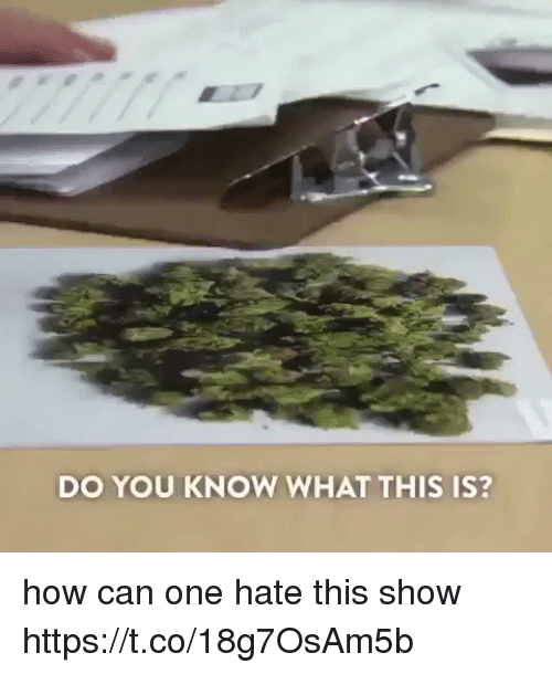 How, Can, and One: DO YOU KNOW WHAT THIS IS? how can one hate this show  https://t.co/18g7OsAm5b