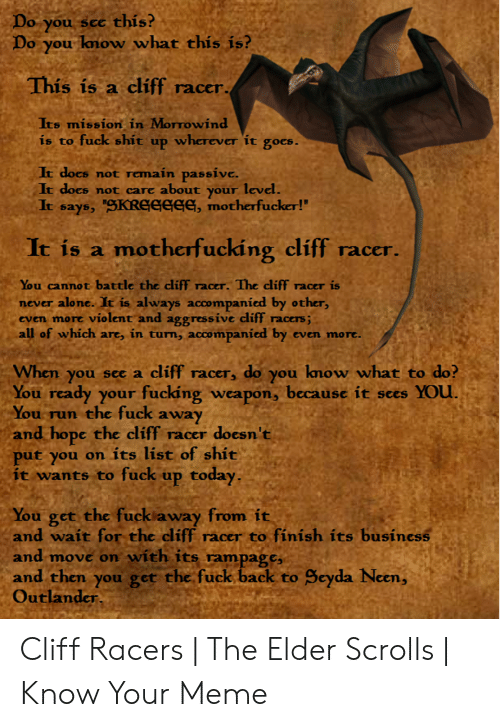 "Being Alone, Fucking, and Meme: Do you sce  Do you know what this is?  this?  This is a cliff racer.  Its mission in Morrowind  is to fuck shit up wherever it goes.  It does not remain passive.  It does  about your level.  not care  It says, SKREGEEE, motherfucker!""  It is a motherfucking cliff racer  You cannot battle the cliff  never alone. It is always accompanied by other,  even more violent and aggressive cliff racers;  all of which are, in turn, accompanied by  racer. The cliff racer is  even more.  When you see a  cliff racer, do you know what to do?  You ready your fucking weapon, because it sees YOU.  You run  the fuck away  and hope the cliff racer  put you on its list of shit  it wants to fuck up today,  doesn't  You get the fuck away from it  and wait for the cliff racer to finish its business  and move on with its rampage,  and then you get the fuck back to  Outlander.  Seyda Neen, Cliff Racers 