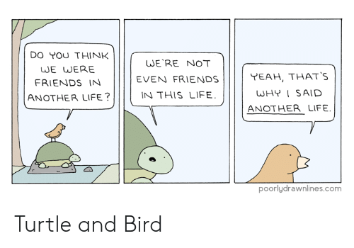 Friends, Life, and Turtle: DO YOU THINK  JE WERE  FRIENDS IN  ANOTHER LIFE?  WE'RE NOT  EVEN FRIENDSYEAH, THATS  WHYI SAID  ANOTHER LIFE.  N THIS LIFE  poorlydrawnlines.com Turtle and Bird