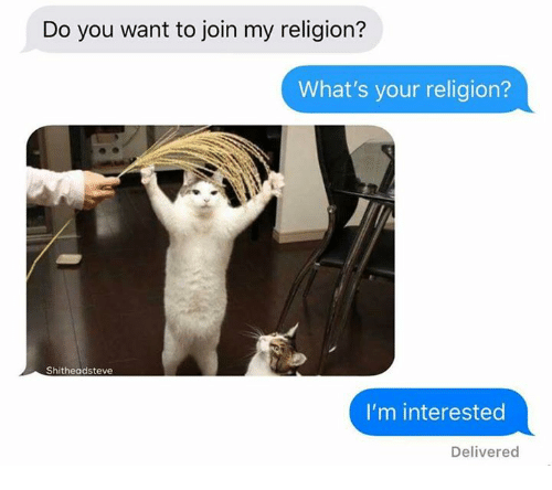 Dank, Religion, and 🤖: Do you want to join my religion?  What's your religion?  Shitheadsteve  I'm interested  Delivered