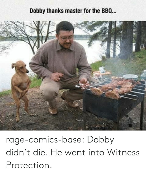 Tumblr, Blog, and Http: Dobby thanks master for the BBQ… rage-comics-base:  Dobby didn't die. He went into Witness Protection.