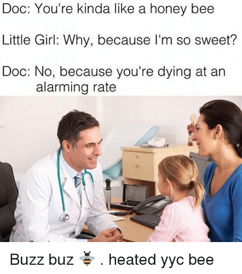Memes, Alarm, and Heat: Doc: You're kinda like a honey bee  Little Girl: Why, because I'm so sweet?  Doc: No, because you're dying at an  alarming rate Buzz buz 🐝 . heated yyc bee