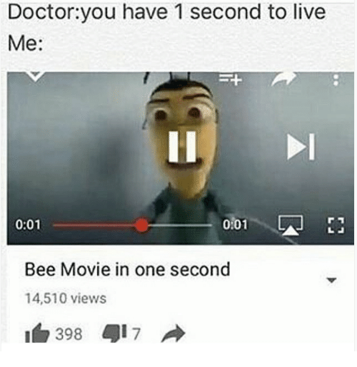 Bee Movie In One Second