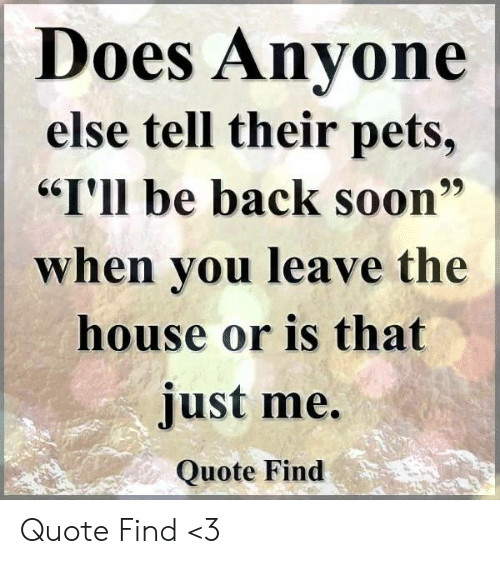 "Memes, Soon..., and Pets: Does Anvone  else tell their pets,  ""I'll be back soon""  when vou leave the  house or is that  just me.  Quote Find Quote Find <3"