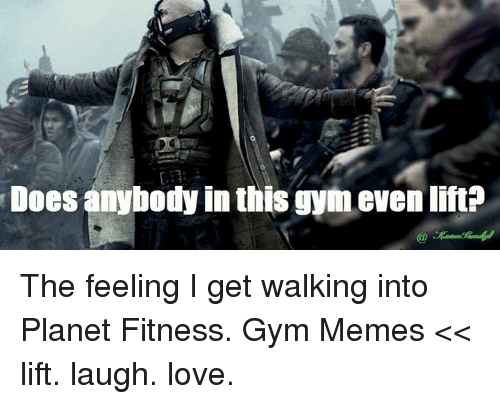 Gym, Love, and Memes: Does anybody in this gym evenlift? The feeling I get walking into Planet Fitness.  Gym Memes << lift. laugh. love.
