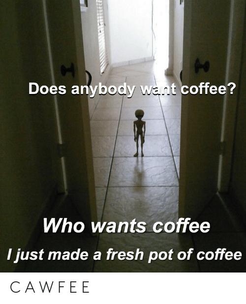 Fresh, Memes, and Coffee: Does anybody want coffee?  Who wants coffee  I just made a fresh pot of coffee C A W F E E